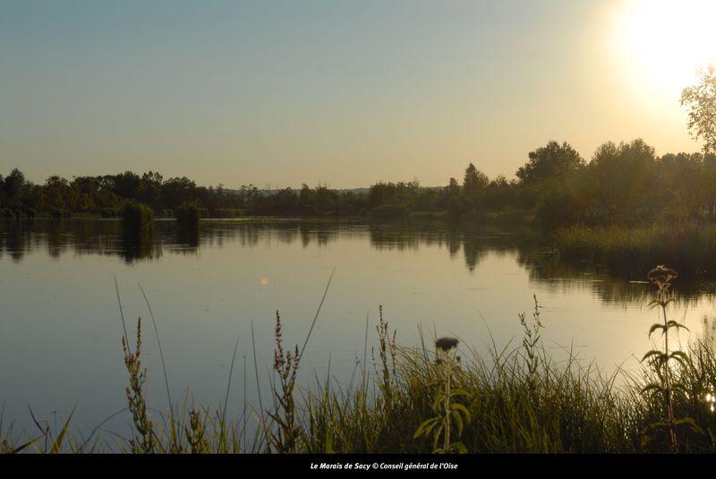 Marais de Sacy coucher de soleil